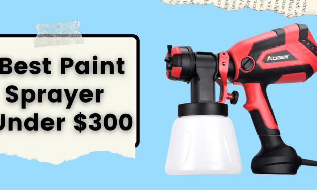 5 Best Paint Sprayer Under $300 For 2021 (Ultimate Guide Ever)